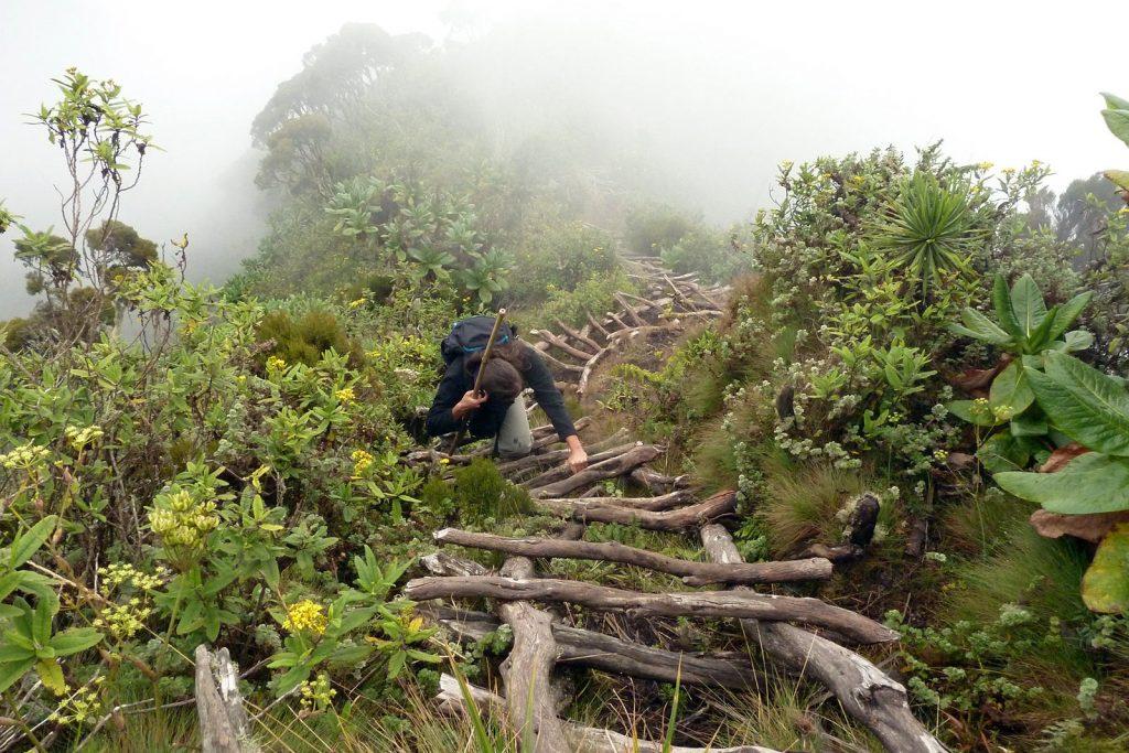 Hike Mount Sabyinyo