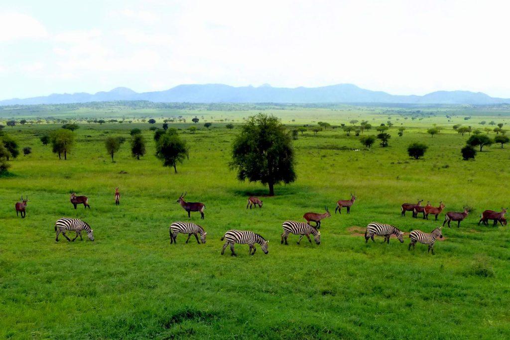 Namamukweny Valley