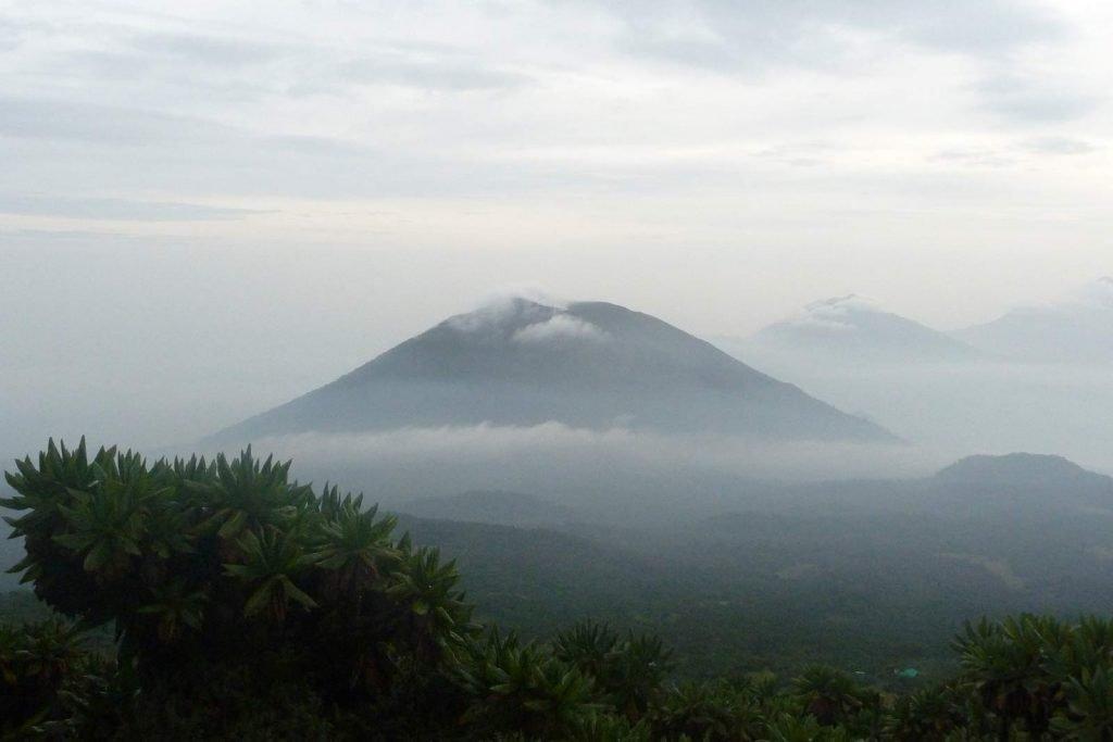 Mount Karisimbi Hiking