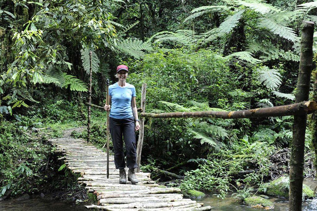 ivy river trail in bwindi walking safari hiking